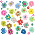 colored flowers pattern isolated on white background