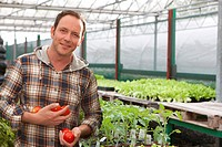 Portrait of smiling man holding tomatoes in greenhouse