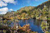 Twisted Lakes, Cradle Mountain_Lake St. Clair National Park, UNESCO World Heritage Site, Tasmania, Australia, Pacific