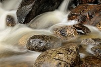 Rocks and rapids in Outlet Creek, Banff NP, Alberta, Canada