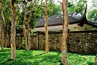 Chinese traditional house behind the forest