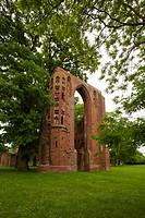 Ruins of Eldena monastery, near Greifswald, Baltic Sea, Mecklenburg_West Pomerania, Germany