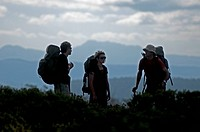 Three trekker on the way to Herods Gates, Walls of Jerusalem National Park, Tasmania, Australia, UNESCO World Nature Site, Tasmania, Australia