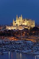 View of harbour, cathedral La Seu and palace Palau de l´Almudaina, Palma de Mallorca, Mallorca, Balearic Islands, Spain, Europe