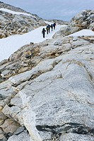 Field of snow and rock structures, hikers at Mittivakkat Glacier, Ammassalik Peninsula, East Greenland, Greenland