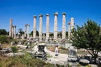 Turkey, Aegean region, Aphrodisias, the ancient city, the temple of Aphrodite