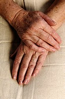 Wrinkly hands of a old woman, 80 years