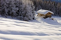 France, Savoie, Les Arcs 1800, Massif de La Vanoise, high Tarentaise valley, chalet isolated in the forest