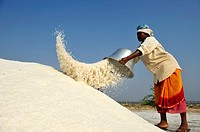 Woman working in Salt fields,Tamil Nadu,South India,Asia