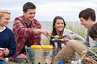 Teenage friends enjoying barbecue in grass