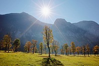 Austria, Tyrol, View of Karwendel Mountains with sycamore maples