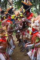 Huli Wigmen from the Tari Valley in the Southern Highlands, wearing bird of paradise feathers and plumes, at a Sing-sing, Mt Hagen, Papua New Guinea, ...