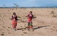 Ethiopian girls collect firewood for cooking Due to global warming and change in climate, there are less trees and therefore less firewood available