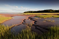 Bay of Fundy mud on the Cumberland Basin at low_tide, Rockport, New Brunswick