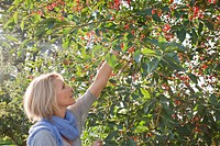 Caucasian woman in orchard