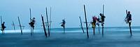 Fishermen perched on their stilts in Midigama, Sri Lanka