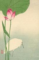 White heron and lotus 1894