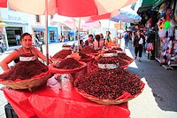 Vendor selling chapulines fried grasshoppers, Oaxaca City, Oaxaca, Mexico, North America