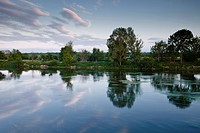An almost mirror reflection in the River Cher near Villefranche_sur_Cher, Centre, France, Europe