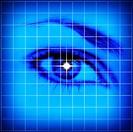 Studio shot of grid pattern with female eye