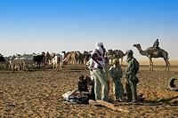 Arab tribe, Bahar el Gazal, Chad ...