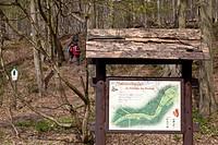 Nature trail at Meisdorf, Selketal, Falkenstein/Harz, Harz District, Harz, Saxony_Anhalt, Germany / Naturlehrpfad bei Meisdorf, Selketal, Falkenstein/...