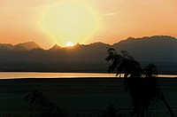 Africa, Egypt, View of golf course at sunset