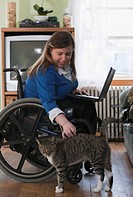Businesswoman with Spina Bifida in a wheelchair using a laptop at home and petting a cat
