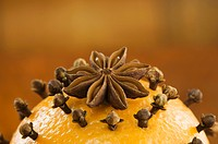 An orange pierced with cloves and an anise star