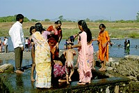 Family Bathing In Hot Water Spring At Akloli Near Vjreshwari Thane District, Maharashtra, India
