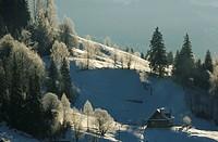 lonely house in Dzembronya landscape in Ukraine Carpathian Mountains