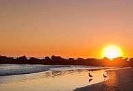 Sunset at Venice beach, Los Angeles, USA