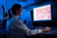 Scientist using computer in lab