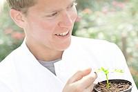 Scientist examining plant outdoors