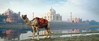 Taj Mahal, seen from the East along the Yamuna River  Uttar Pradesh  Agra, India, Ganges River.