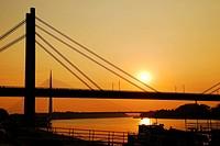 Bridges in Belgrade
