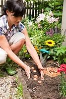 Woman planting gladiolus bulbs