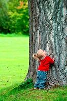 Kleines Mädchen steht am Stamm eines großen Baumes und schaut staunend in die Höhe. Little girl stands at the base of a very large tree and looks up.