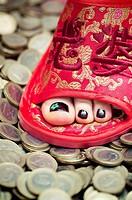 Chinese feet on European money
