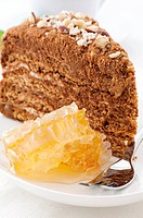Honey cake with honeycomb as closeup on a white plate