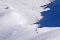 Lone ski mountaineers with shadow of a mountain, walking towards Mt Ahornspitze, Zillertal valley, Tyrol, Austria, Europe