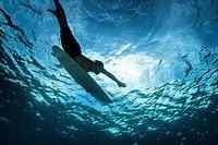 surfer paddling shot from underwater
