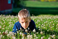 Young boy lying on a meadow