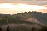 Mountain misty sunrise