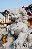 Chinese guardian lion statue at a monastery, Western Monastery, Tsuen Wan, Hong Kong, China