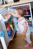 Little girl exploring the fridge