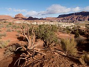 Landscape In Paria Canyon, Arizona United States Of America