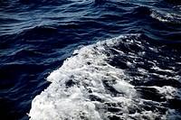 dark sea wate