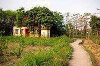 Path in village of Hong Kong