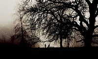 Two people meet in a misty park
